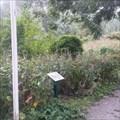 Image for IVN nature centre - Alphen aan den Rijn (NL)