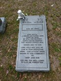 Image for Baby Jane Doe - Gainesville, FL
