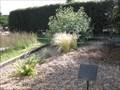Image for Bournemouth Crematorium Butterfly Garden - Bournemouth, Dorset, UK