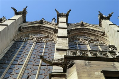 Notre Dame Cathedral Gargoyles, Paris, France