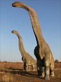 Image for Brachiosaurus  - JuraPark Krasiejów, Poland