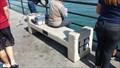 Image for Steven Eberle - Huntington Beach, CA