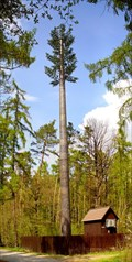 Image for Fake Pine Tree Tower / Falesna borovice (Nouzov, Czech Republic)
