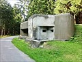 Image for Infantry blockhouse R-S 72 - Orlicke mountains, Czech Republic