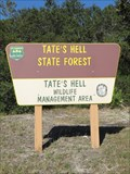 Image for Big Bend Scenic Byway - Tate's Hell State Forest - Carrabelle, Florida.