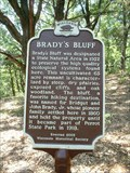 Image for BRADY'S BLUFF