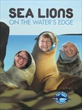 Image for Sea Lions On The Water's Edge- Sarasota, FL
