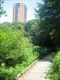 Image for Wards Pond Boardwalk, Olmsted Park - Boston, MA