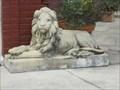 Image for Village Store Lions - Jacksonville, FL
