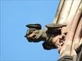 Image for Gargoyles at Temple Saint-Étienne de Mulhouse - Alsace / France