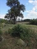 Image for TB 1317-8 U cihelny