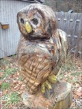 Image for Owl - Holland, Michigan