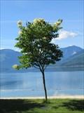 Image for Robyn Pazurik - Nakusp, British Columbia