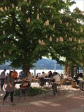 Image for CafeBar Seehaus - Tegernsee, Bayern, Germany