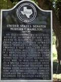 Image for United States Senator Morgan C. Hamilton