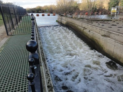 The visible water is the fish pass, the area covered by the green mesh is the eel pass.
