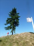 Image for Chambers Bay Golf Course - University Place, Washington