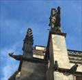Image for Les gargouilles de la cathédrale Saint-Julien du Mans - France
