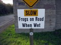 Image for Frogs on Road, Fort Cronkhite, CA