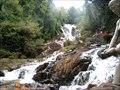 Image for Datanla Waterfalls - Dalat, Vietnam