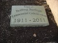 Image for Boiling Springs Centennial Time Capsule