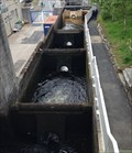 Image for Pitlochry Dam fish ladder