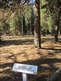 Image for Savenac Nursery and Arboretum, Haugan, MT