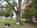 Image for Seminole Whipping Tree - Wewoka, OK