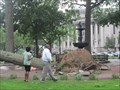 Image for Tornado Strikes Springfield, MA, -  Court Square Takes A Direct Hit.