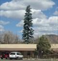Image for Red Lake Hostel - Williams, AZ
