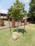Image for Cathy Fairbanks tree - Stillwater, OK