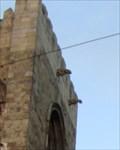 Image for Lisbon Cathedral Gargoyles - Lisbon, Portugal