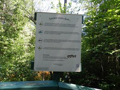 Panneau d'interprétation sur les poissons