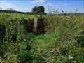 Image for Triangulation Pillar - Parks Farm, Gloucestershire