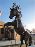Image for Wild Horse - Clayton, New Mexico