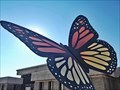 Image for Monarch Butterfly - Lampasas, TX