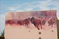 Image for Buffalo Herds - Chicakasha, Oklahoma