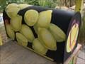 Image for Lemonade Mailbox - Story Garden, Binghamton, NY