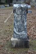 Image for Manuel W. Gunter - Cottonwood Cemetery - Henderson County, TX