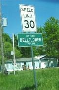 Image for Bellflower, Missouri - Population 393