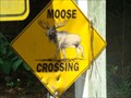 Image for Moose Crossing - Jacksonville, Florida