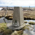 Image for O.S. Triangulation Pillar - Hill of Wirren, Angus.