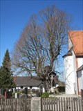 Image for Die 1000 -jährige Edignalinde / The 1000 Years Old Lime (Puch, Germany)