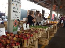 Sodus is about 40 minutes east of us along Lake Ontario.  Very much known for its orchards