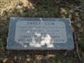 Image for Janet Rutledge Smith tree - McElroy Hall OSU - Stillwater, OK