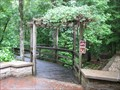Image for Boardwalk Loop - Congaree National Park