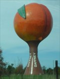 Image for Gaffney Giant Peach