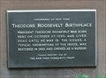 Image for Theodore Roosevelt Birthplace - New York, NY