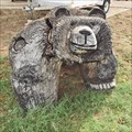 Image for Bear - Lamesa, TX
