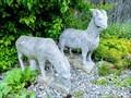 Image for Two Goats - NABU-Gelände - Göttelfingen, Germany, BW